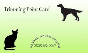 Point card